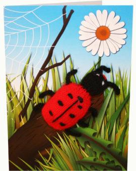 p-660-ladybirdcard.jpg