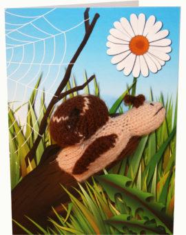 p-664-snailcard.jpg