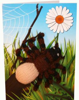 p-672-spidercard.jpg
