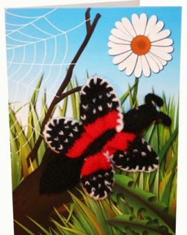 p-676-butterflycard.jpg