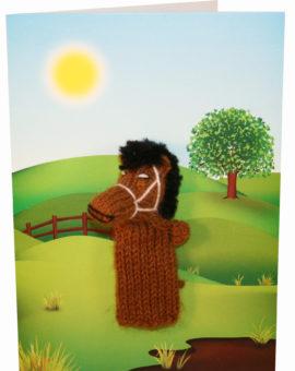 p-265-horsecard.jpg