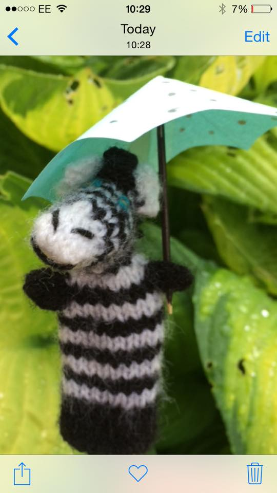 Jazzy Jo in the rain